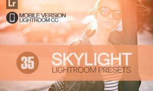 35 Skylight Lightroom Mobile bundle