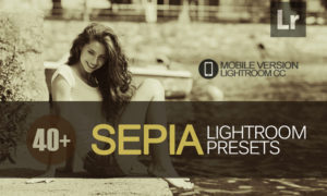 40+ Sepia Lightroom Mobile bundle