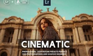 Pro Cinematic Lightroom Presets 3203167