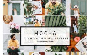 Mobile Lightroom Preset MOCHA 2737771