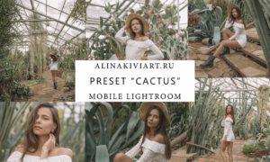 Alina Kiviart - Cactus Lightroom/ACR & Mobile Presets