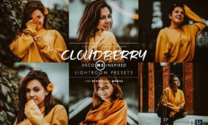 Cloudberry Lightroom Preset 3415912