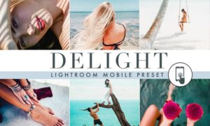 Delight - Summer - Lightroom Mobile Preset