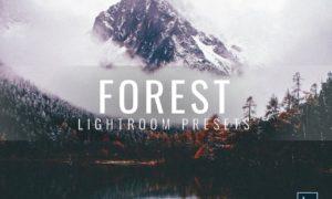 Lightroom Presets Moody Forest 3336411