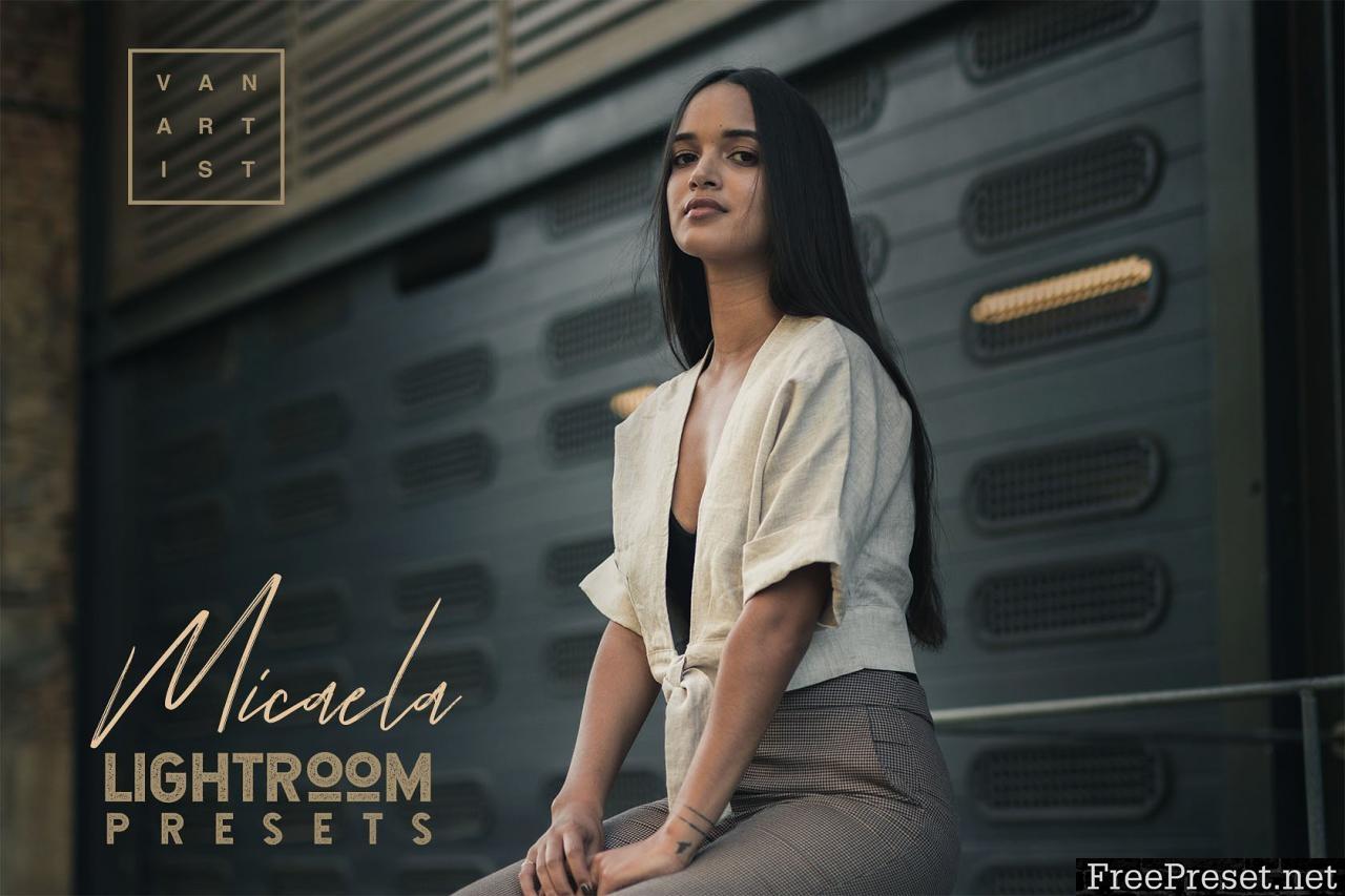 Micaela Portrait Presets 3381133