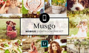 Mobile Lightroom Preset Musgo 3336724