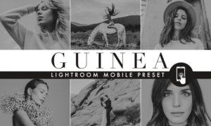 Rich Black Lightroom Mobile preset