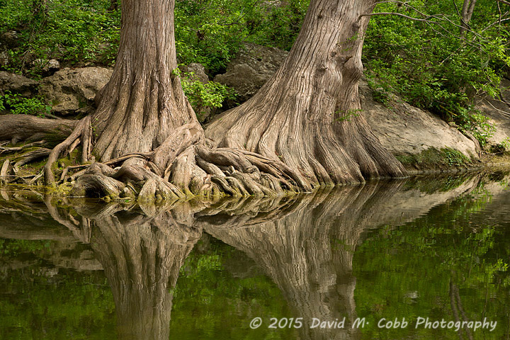 Interview with Landscape Photography David M. Cobb
