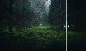 45 Rain Photo Overlays 3279115