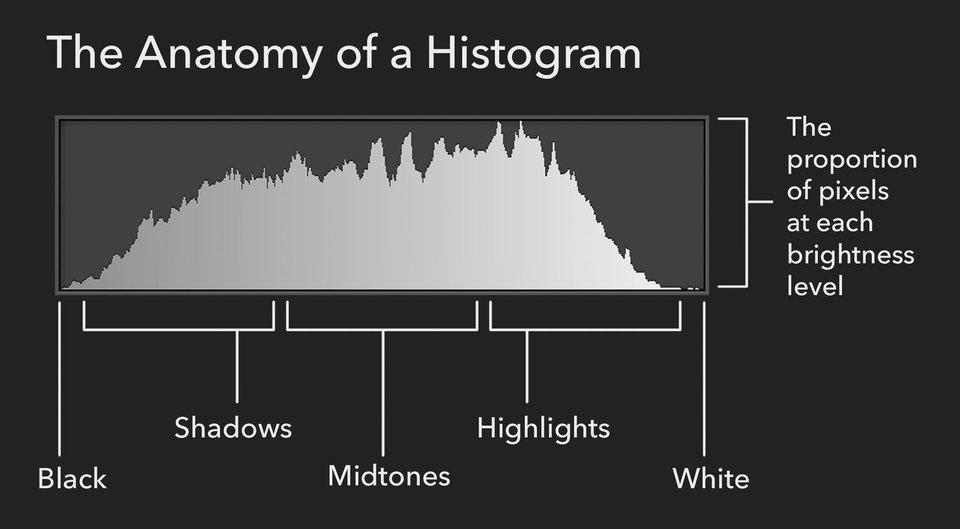 The anatomy of a histogram