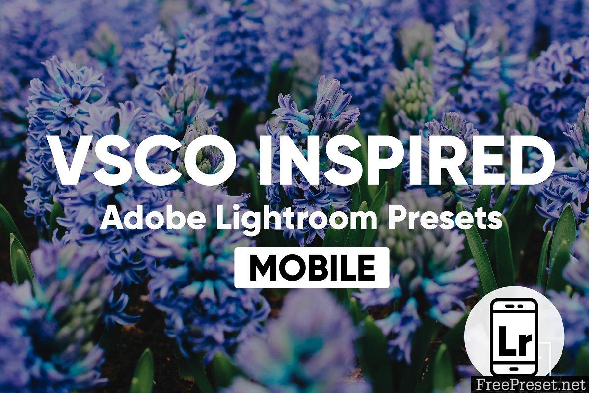 Lightroom CC Mobile VSCO Presets 2870757