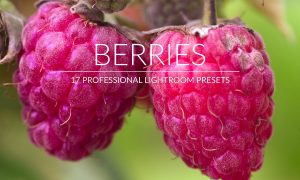Berries Lr Presets 2987765
