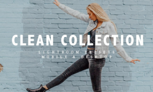 Clean Collection 3506929
