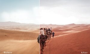 CreTravel Lightroom presets 2941862