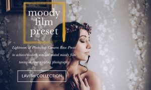 JAYDE & UMBER Photography - Moody Cool Film LR & ACR Presets