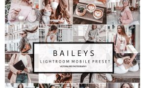 Mobile Lightroom Preset BAILEYS 3308168