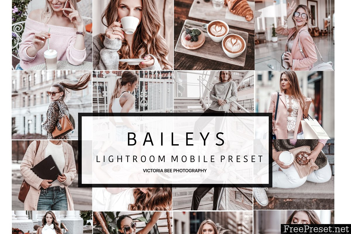 Mobile Lightroom Preset BAILEYS 3308168