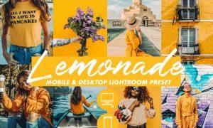 Mobile Lightroom Preset LEMONADE 3309311