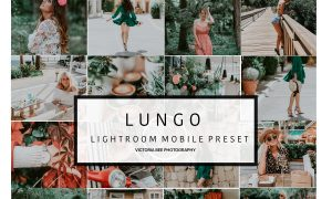 Mobile Lightroom Preset LUNGO 3089153