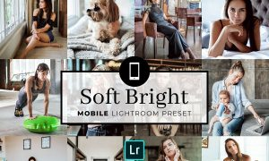 Mobile Lightroom Preset Soft Bright 3383104