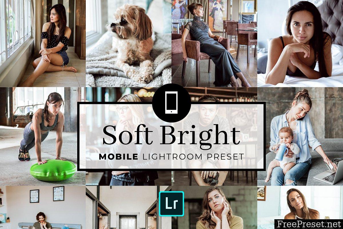 Mobile Lightroom Preset Soft Bright 3383104