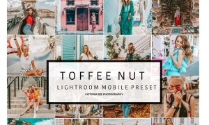 Mobile Lightroom Preset TOFFEE NUT 3181414