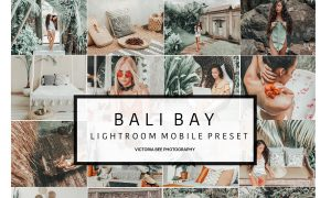 Mobile Lightroom Presets BALI BAY 3388173