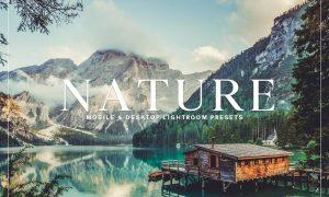 Nature Mobile & Desktop Lightroom Presets Collection 228461