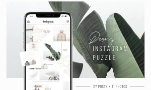 Peony Instagram Puzzle + 11 Photos 2896726