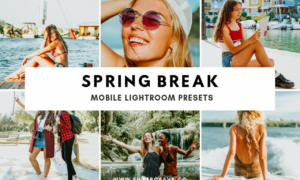Spring Break Mobile Lightroom Preset 3505966