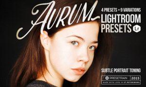 Aurum Lightroom Presets 286363