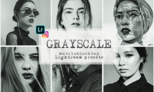 Grayscale presets lightroom mobile monochrome