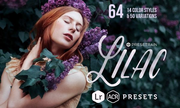 Lilac - 17 Toning Lightroom Presets 278633