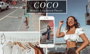 Mobile Lightroom Presets - Coco 3471879