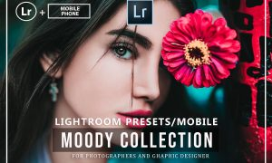 Moody Lightroom Presets And Mobile 3711825