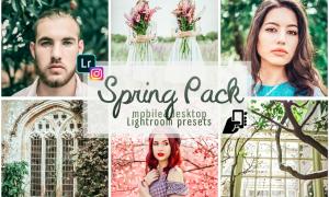Spring presets adobe lightroom pc mobile