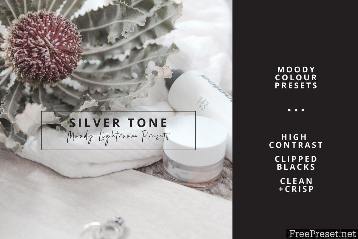 Ash Silver Lightroom Preset Desktop 3525189