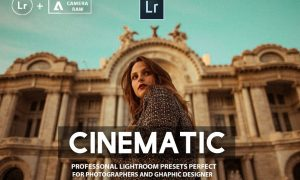 Cinematic Lightroom Presets Collection 1424659