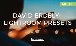 David Erdelyi Lightroom Mobile Presets