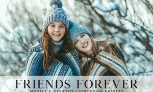 Friends Forever Mobile & Desktop Lightroom Presets