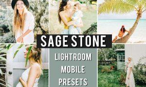 Mobile Preset SAGE STONE 3659099