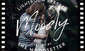 Moody Fine art Lightroom Presets 2394698