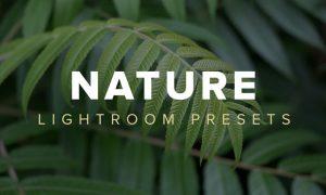 Nature Lightroom Presets U48SX4