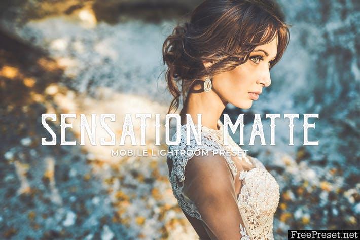Sensation Matte Mobile Lightroom Presets FV6CFK