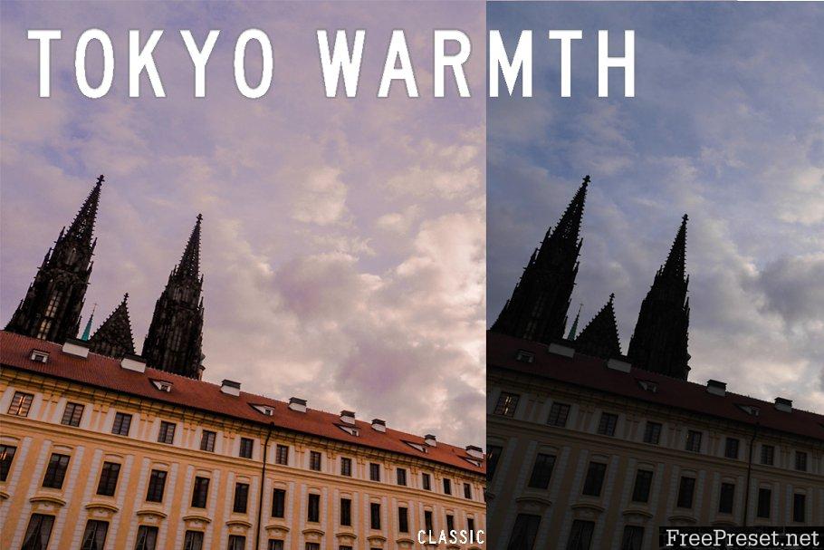 Tokyo Warmth Lightroom Presets 2261469