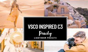 VSCO C3 PEACH ORANGE BRIGHT PRESET 2350495