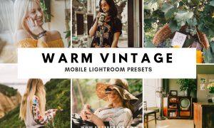 Warm Vintage Lightroom Presets IG 2373255