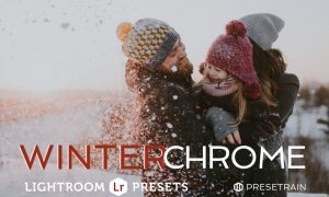 Winterchrome Lightroom Presets ANHEW9
