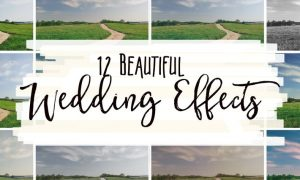 12 Beautiful Wedding Effects  NBSVGT