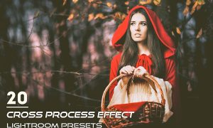 20 Cross Process Effect Presets 3820066
